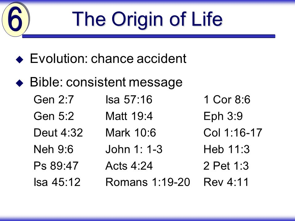 The Origin of Life 6 Evolution: chance accident