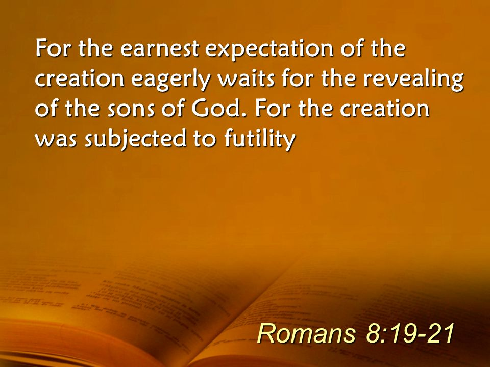 For the earnest expectation of the creation eagerly waits for the revealing of the sons of God. For the creation was subjected to futility