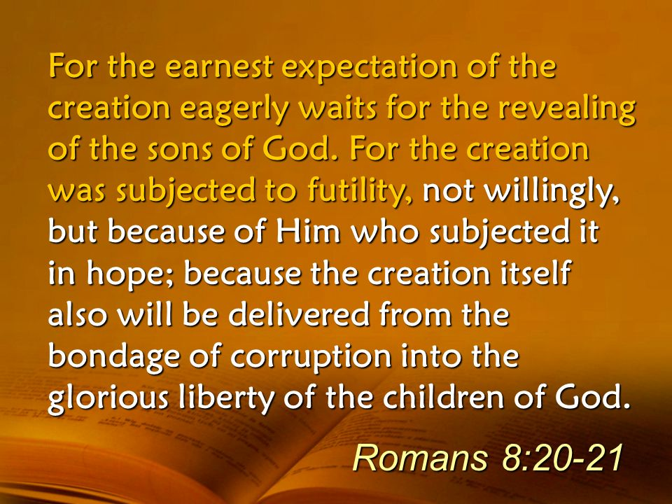 For the earnest expectation of the creation eagerly waits for the revealing of the sons of God. For the creation was subjected to futility, not willingly, but because of Him who subjected it in hope; because the creation itself also will be delivered from the bondage of corruption into the glorious liberty of the children of God.