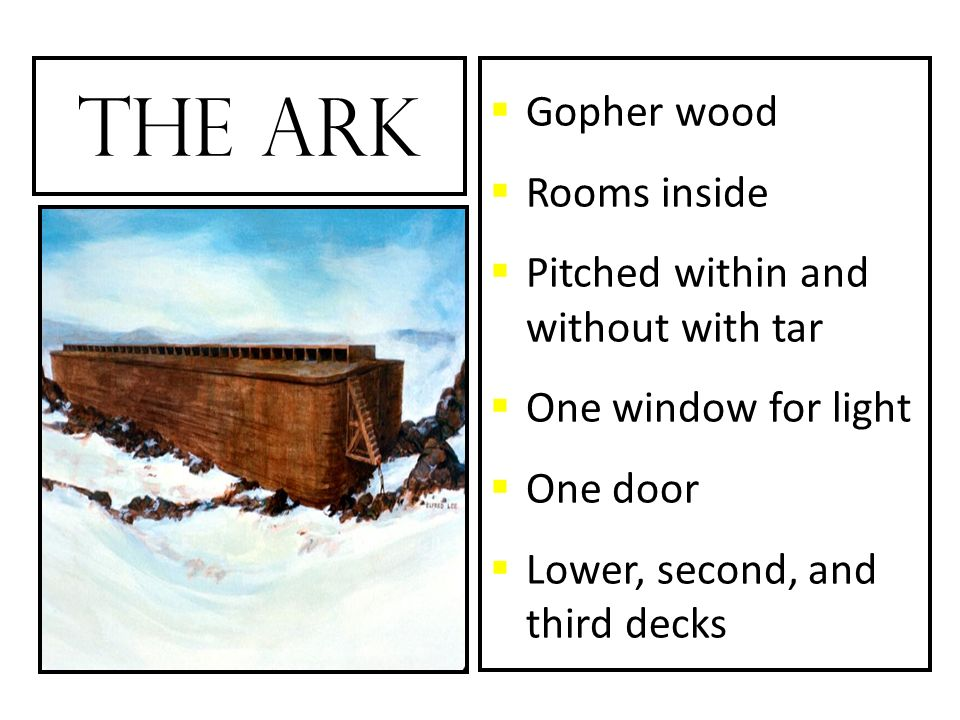 The Ark Gopher wood Rooms inside Pitched within and without with tar