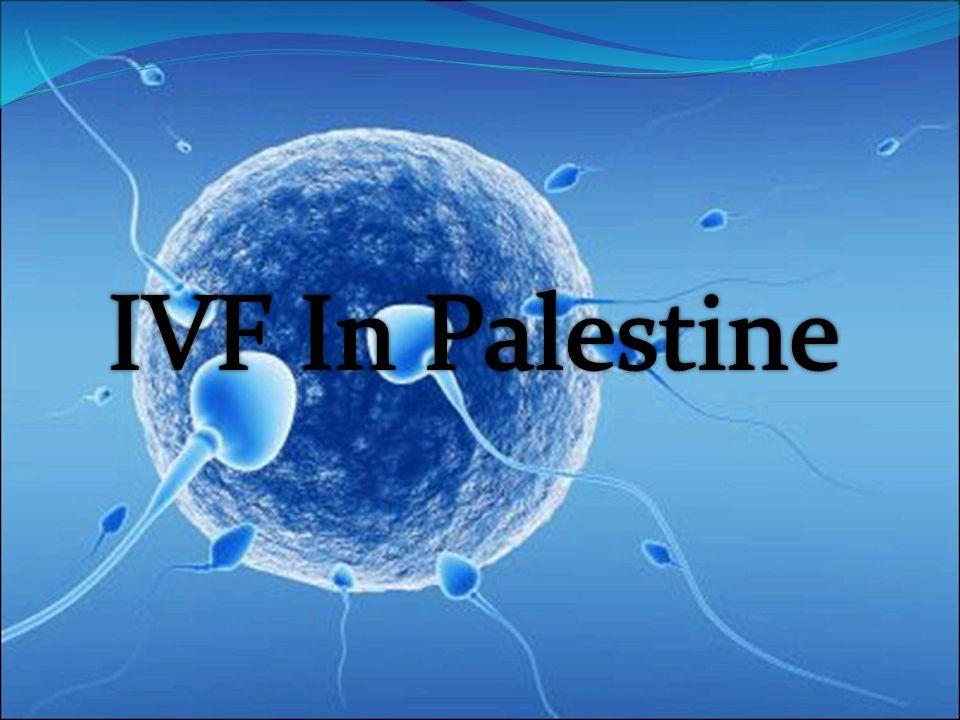 IVF In Palestine