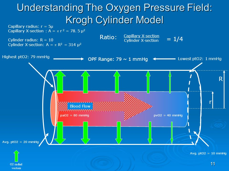 Understanding The Oxygen Pressure Field: Krogh Cylinder Model