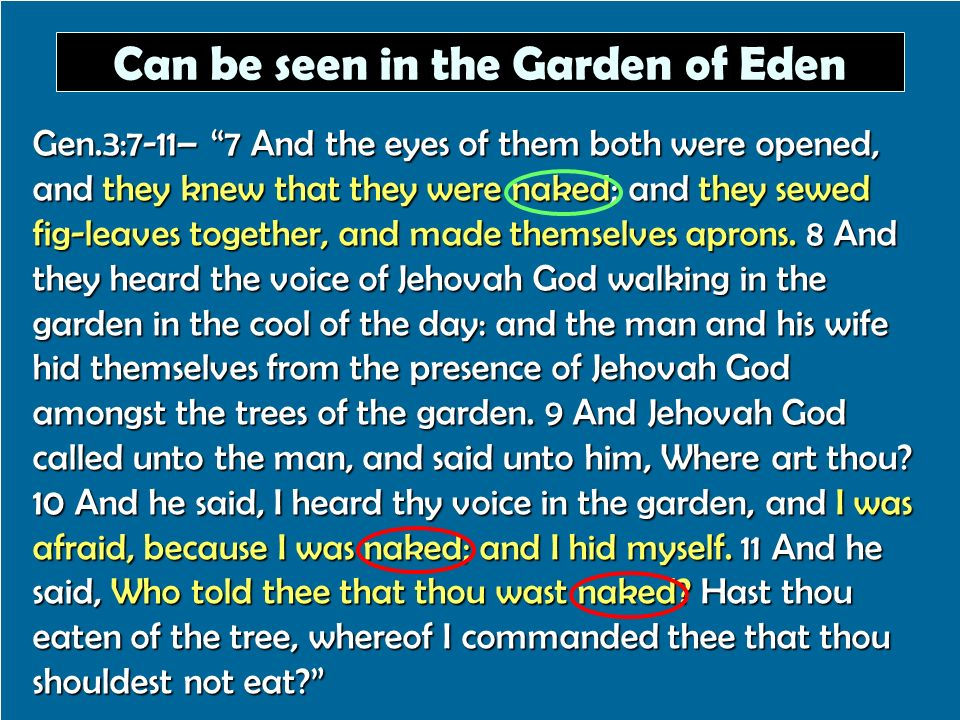 Can be seen in the Garden of Eden