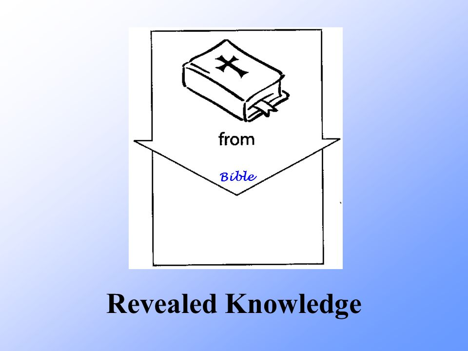 Bible Revealed Knowledge