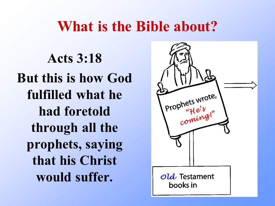 What is the Bible about Acts 3:18