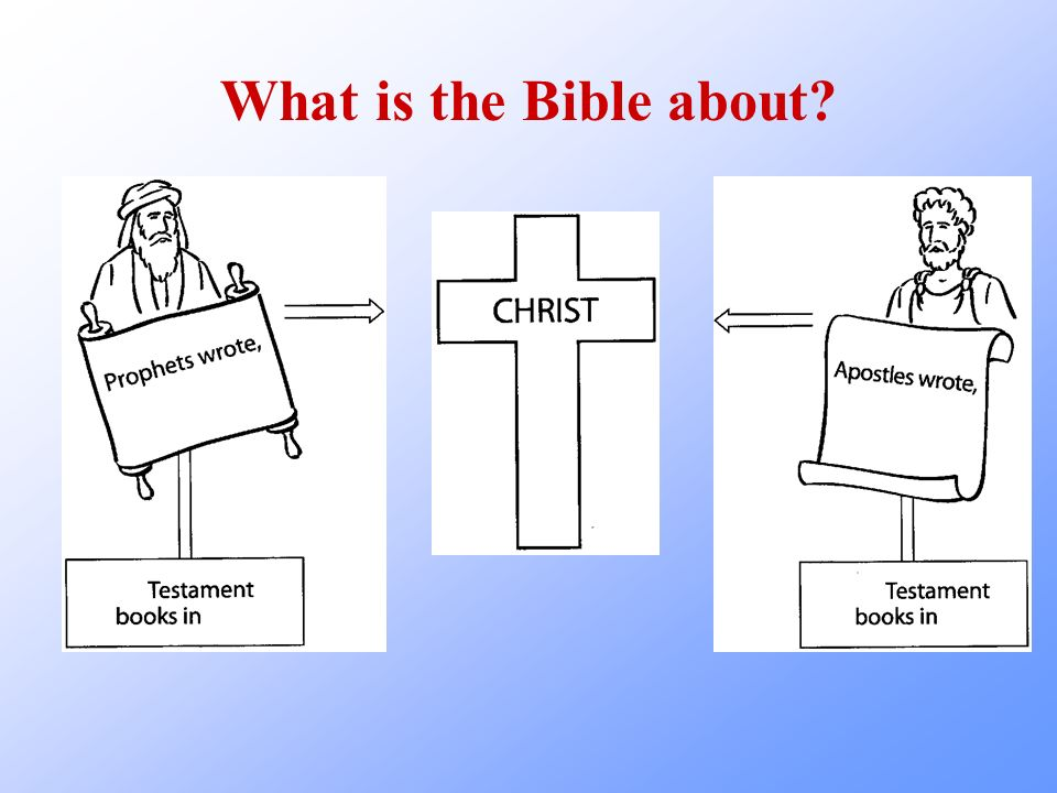 What is the Bible about