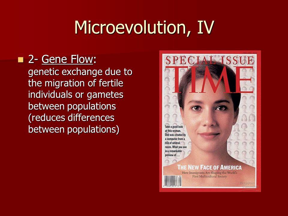 Microevolution, IV