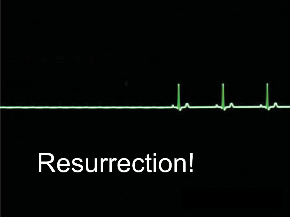 Resurrection!