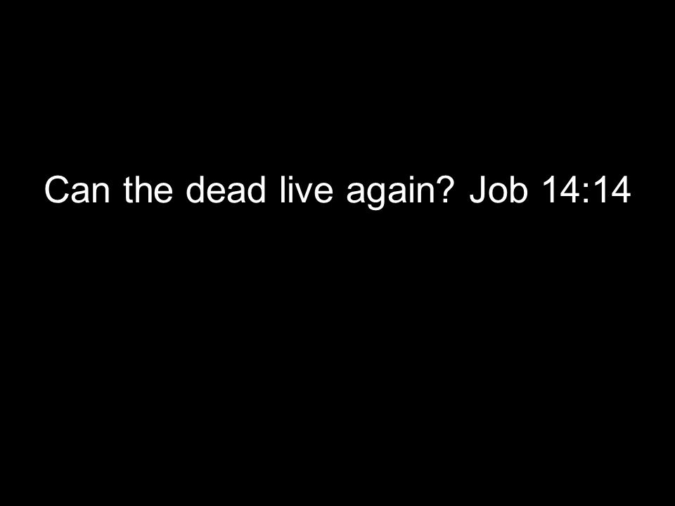 Can the dead live again Job 14:14
