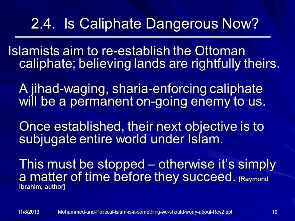 2.4. Is Caliphate Dangerous Now