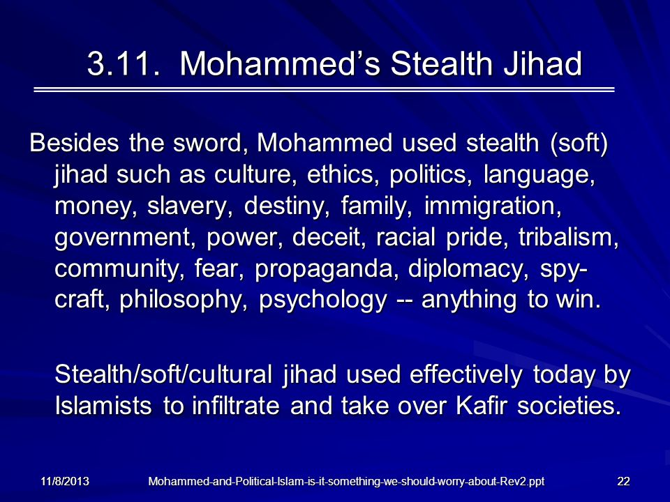 3.11. Mohammed's Stealth Jihad