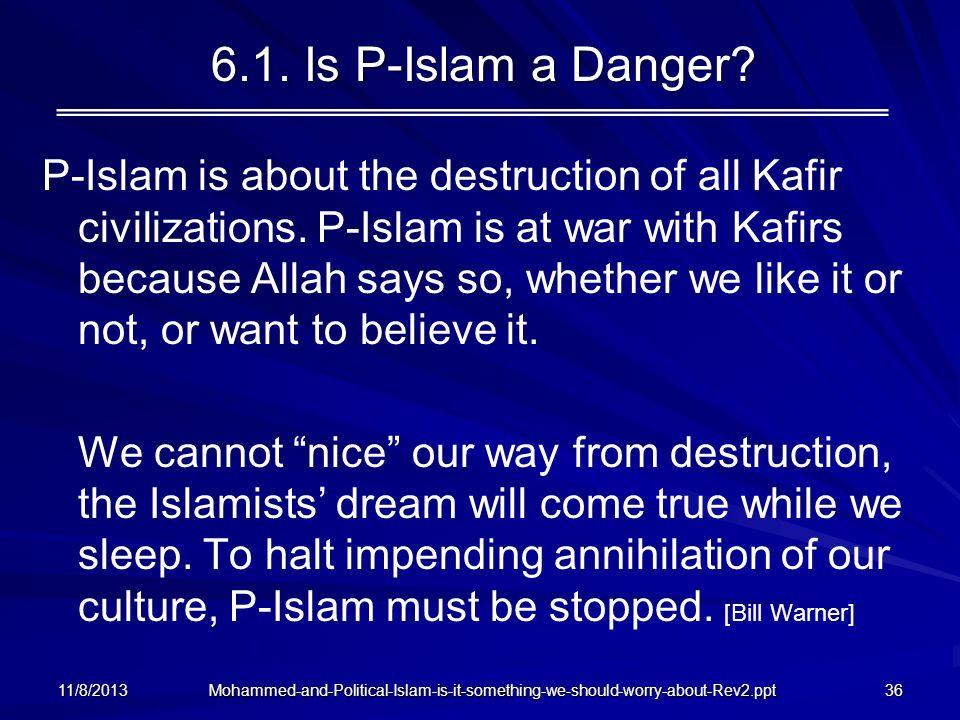 6.1. Is P-Islam a Danger