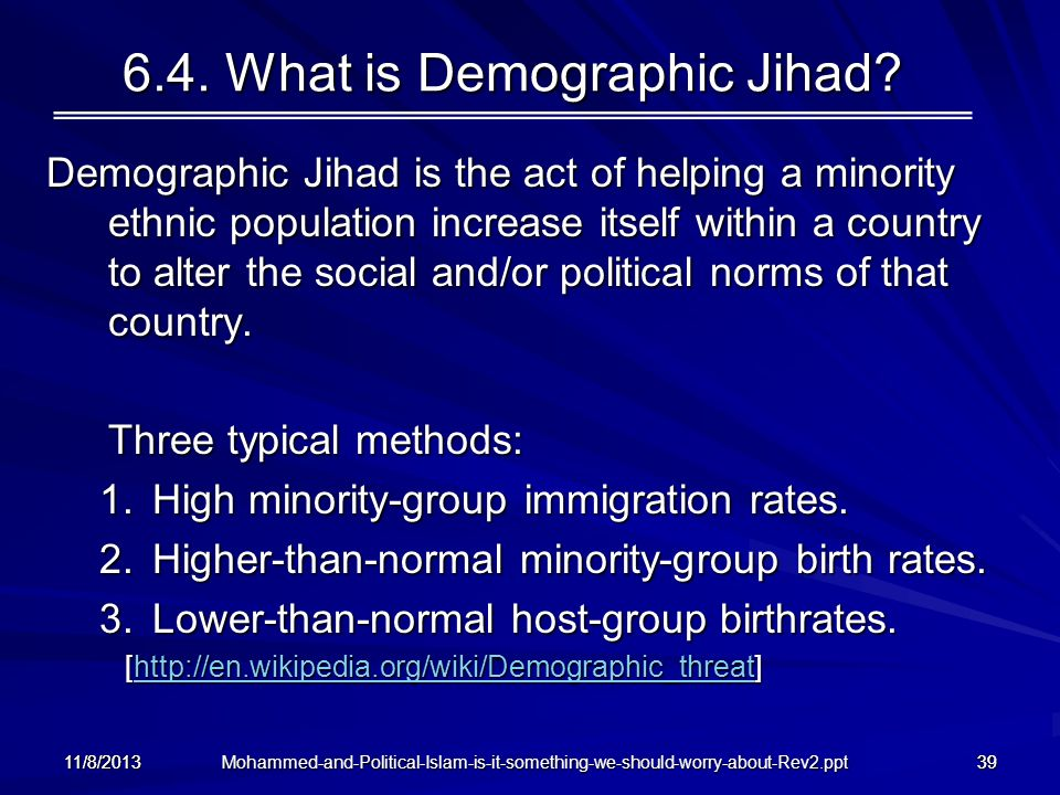 6.4. What is Demographic Jihad