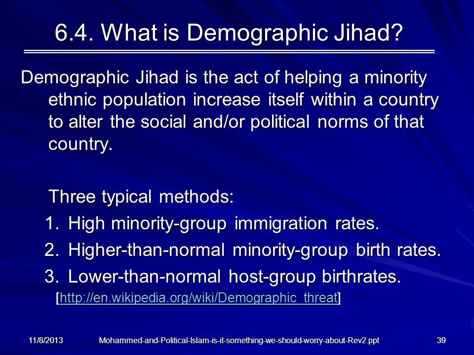 6.4. What is Demographic Jihad