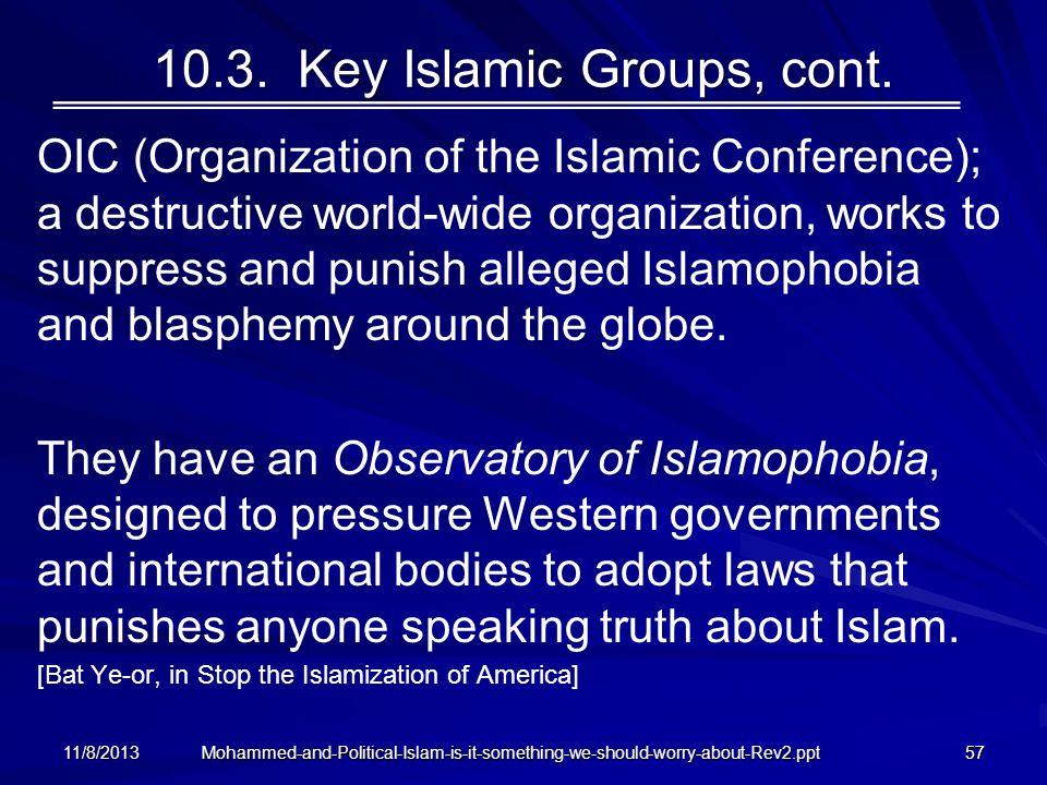 10.3. Key Islamic Groups, cont.