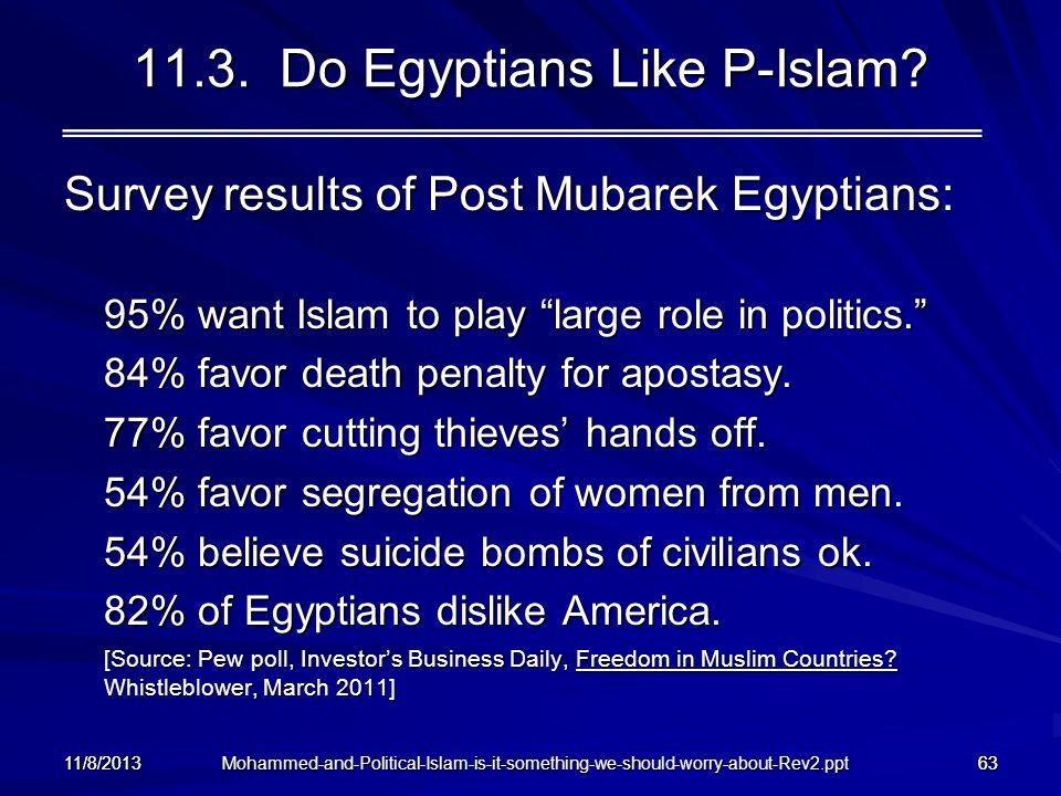 11.3. Do Egyptians Like P-Islam