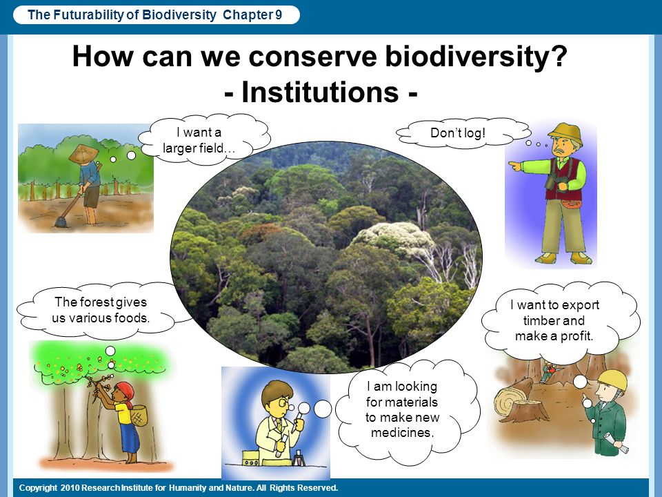 How can we conserve biodiversity - Institutions -
