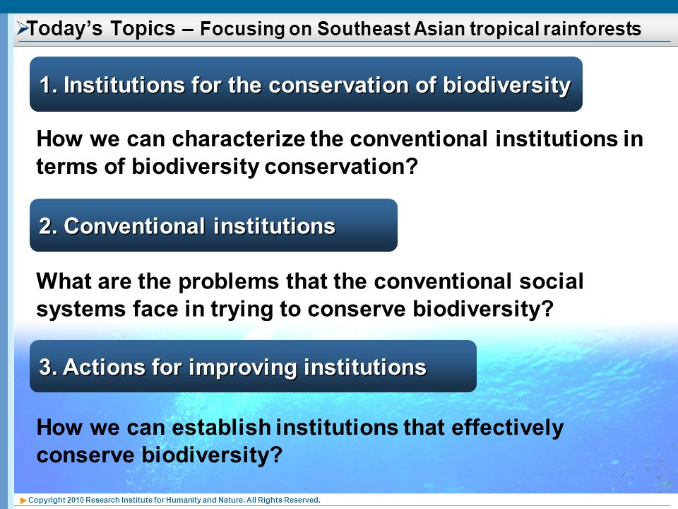 Today's Topics – Focusing on Southeast Asian tropical rainforests