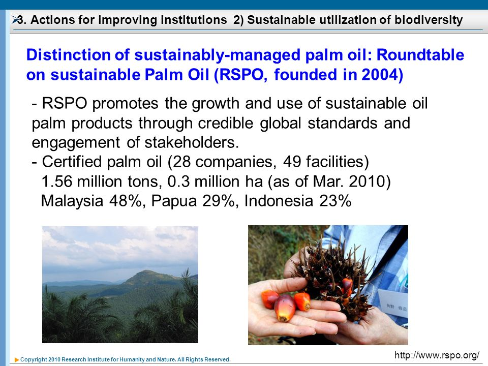 Certified palm oil (28 companies, 49 facilities)