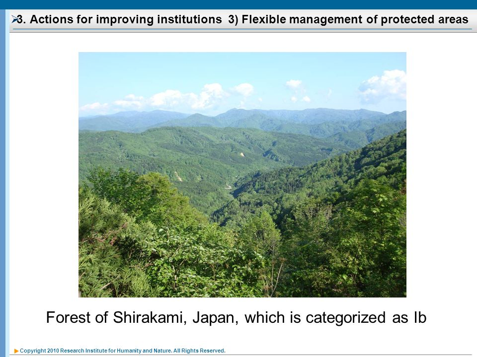 Forest of Shirakami, Japan, which is categorized as Ib