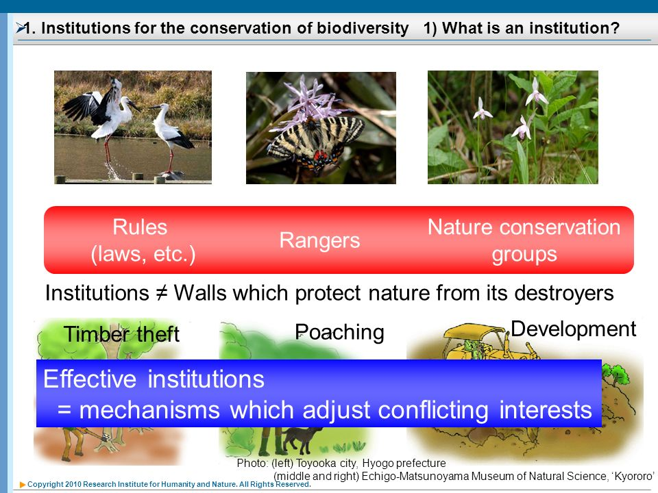 Nature conservation groups