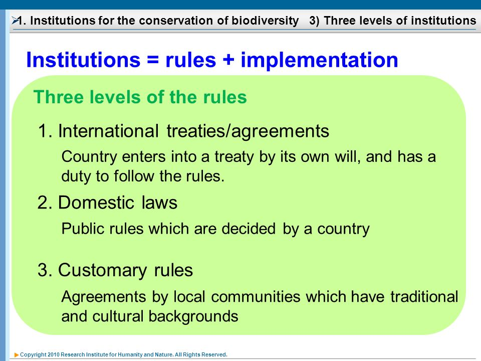Institutions = rules + implementation
