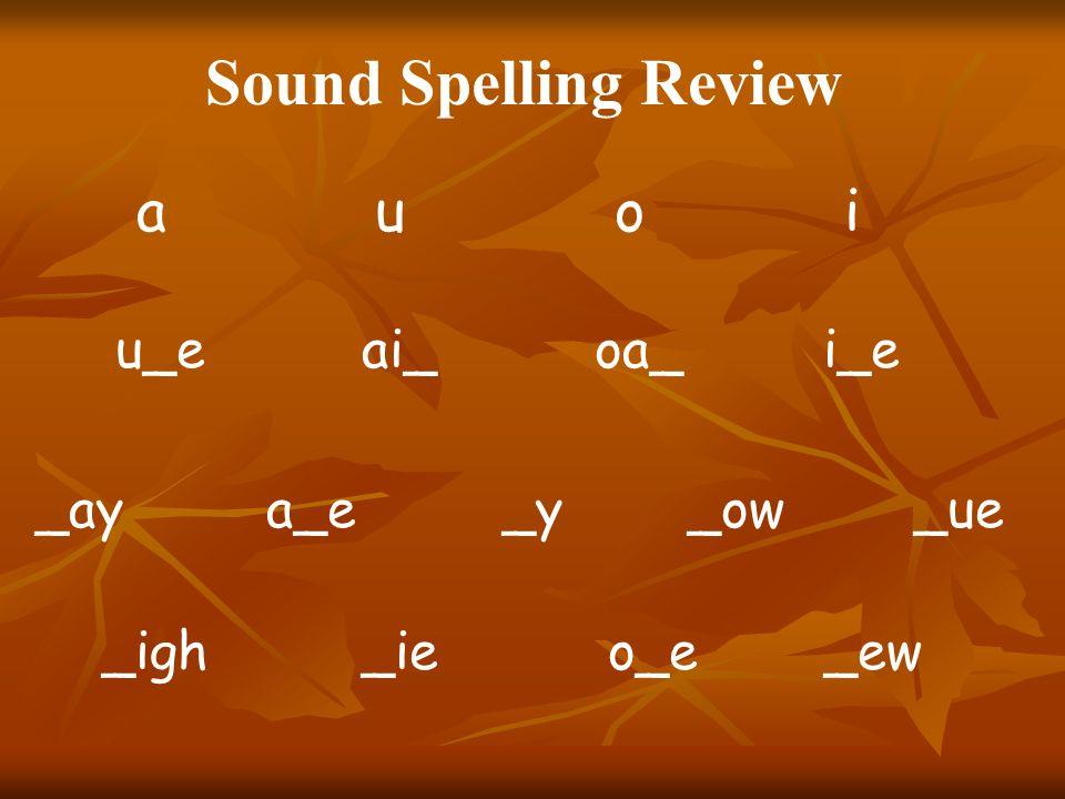 Sound Spelling Review a u o i u_e ai_ oa_ i_e _ay a_e _y _ow _ue _igh