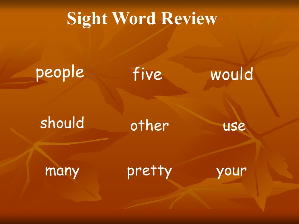 Sight Word Review people five would should other use many pretty your