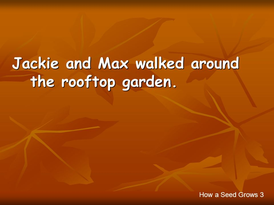 Jackie and Max walked around the rooftop garden.