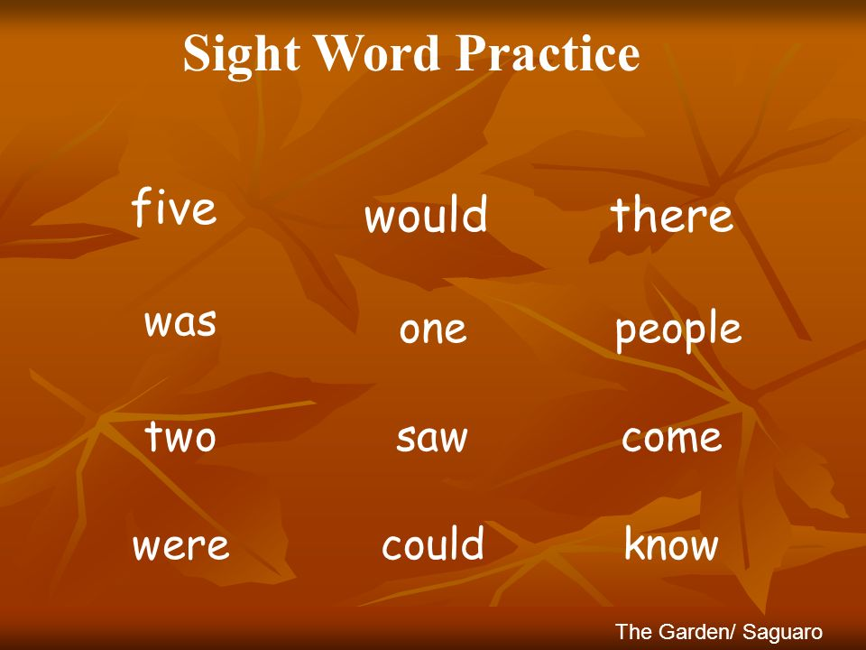 Sight Word Practice five would there was one people two saw come were