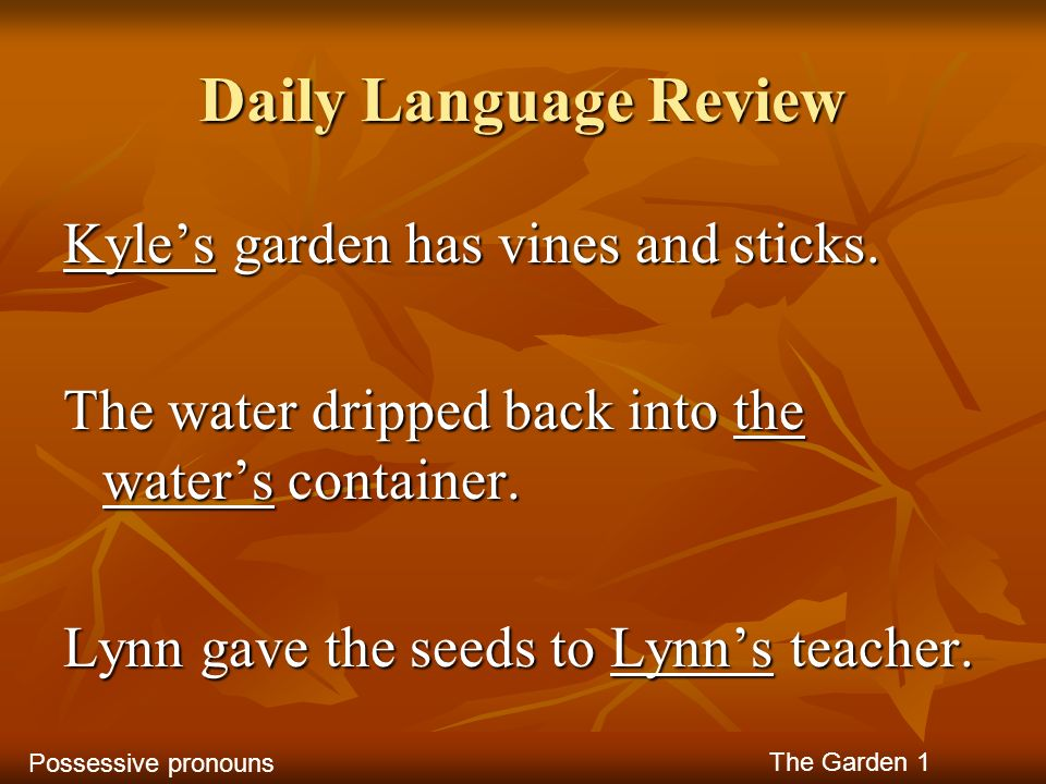Daily Language Review Kyle's garden has vines and sticks.