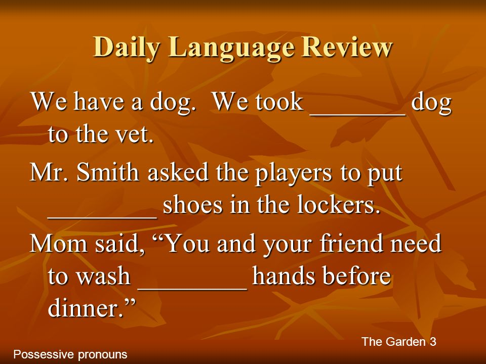 Daily Language Review We have a dog. We took _______ dog to the vet.