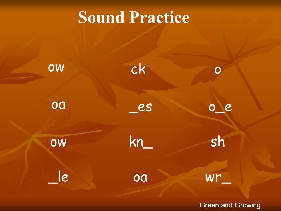 Sound Practice ow ck o oa _es o_e ow kn_ sh _le oa wr_