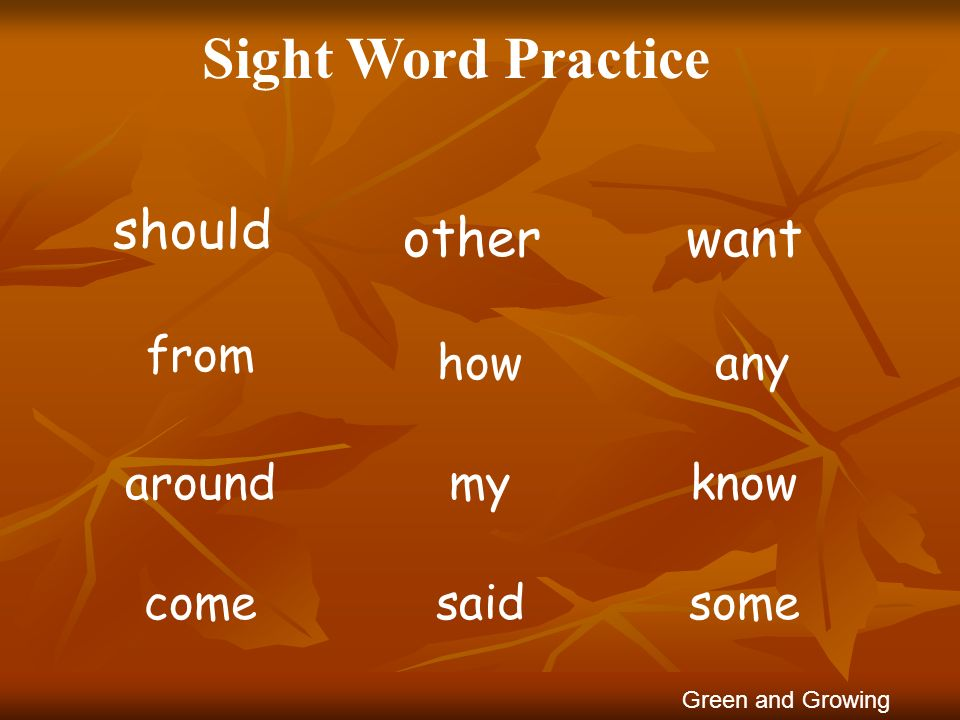 Sight Word Practice should other want from how any around my know come