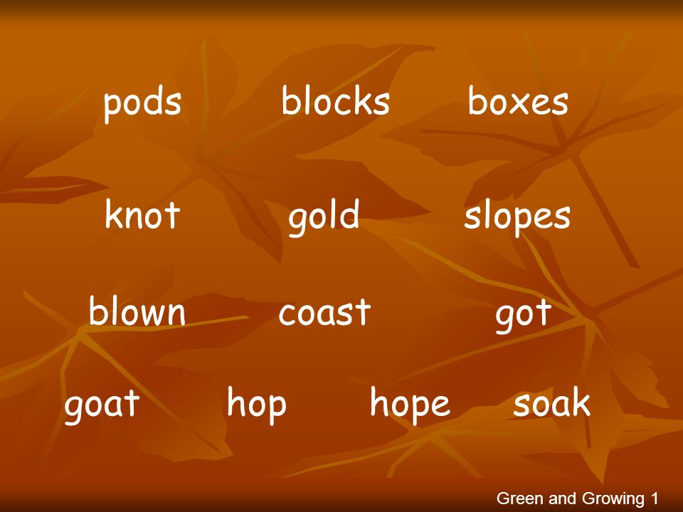 pods blocks boxes knot gold slopes blown coast got goat hop hope soak