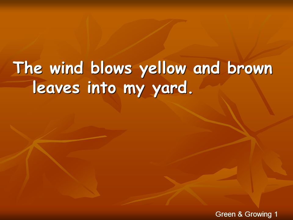 The wind blows yellow and brown leaves into my yard.