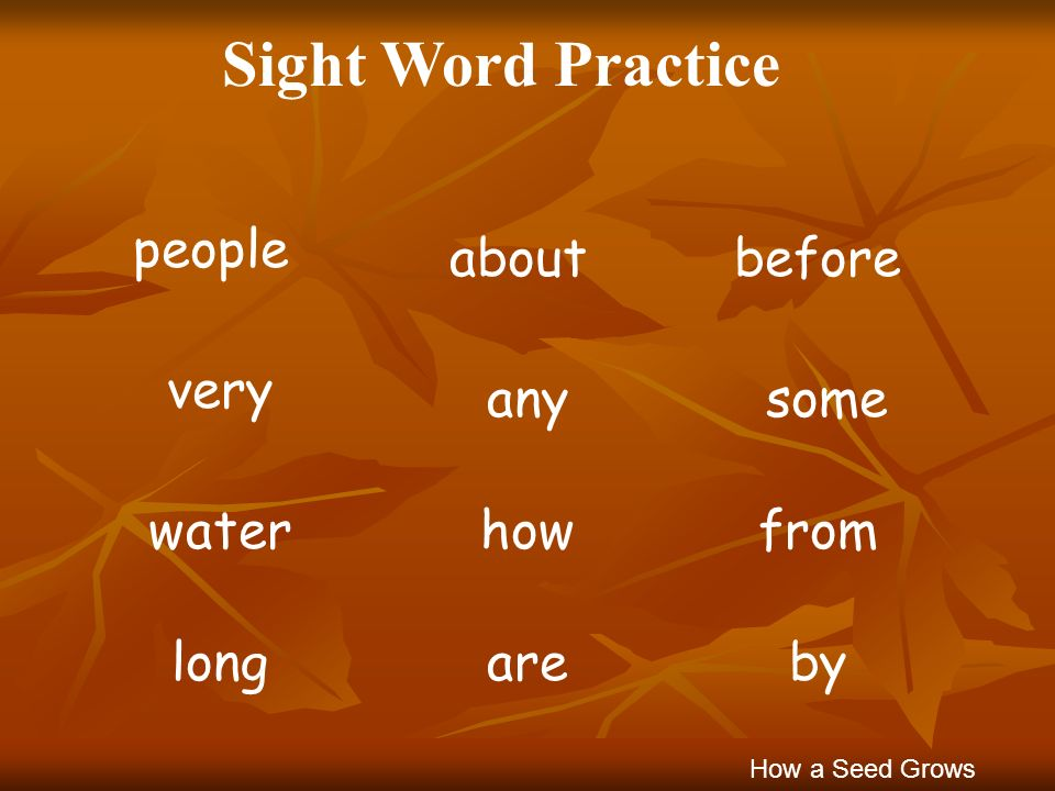 Sight Word Practice people about before very any some water how from