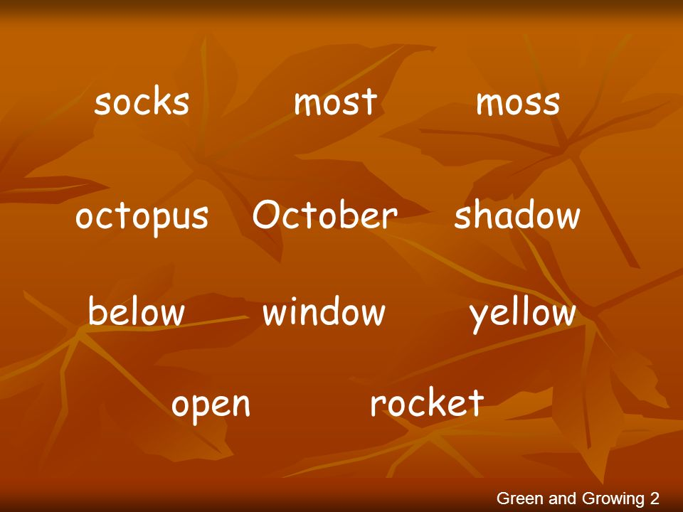 socks most moss octopus October shadow below window yellow open rocket