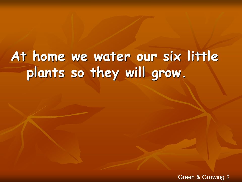 At home we water our six little plants so they will grow.