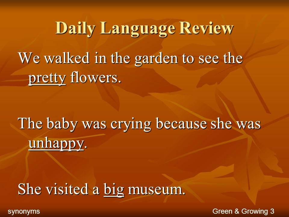 Daily Language Review We walked in the garden to see the pretty flowers. The baby was crying because she was unhappy.