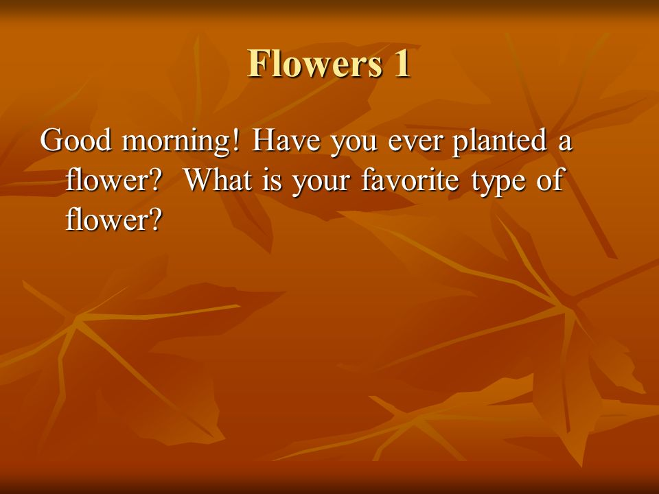 Flowers 1 Good morning! Have you ever planted a flower What is your favorite type of flower