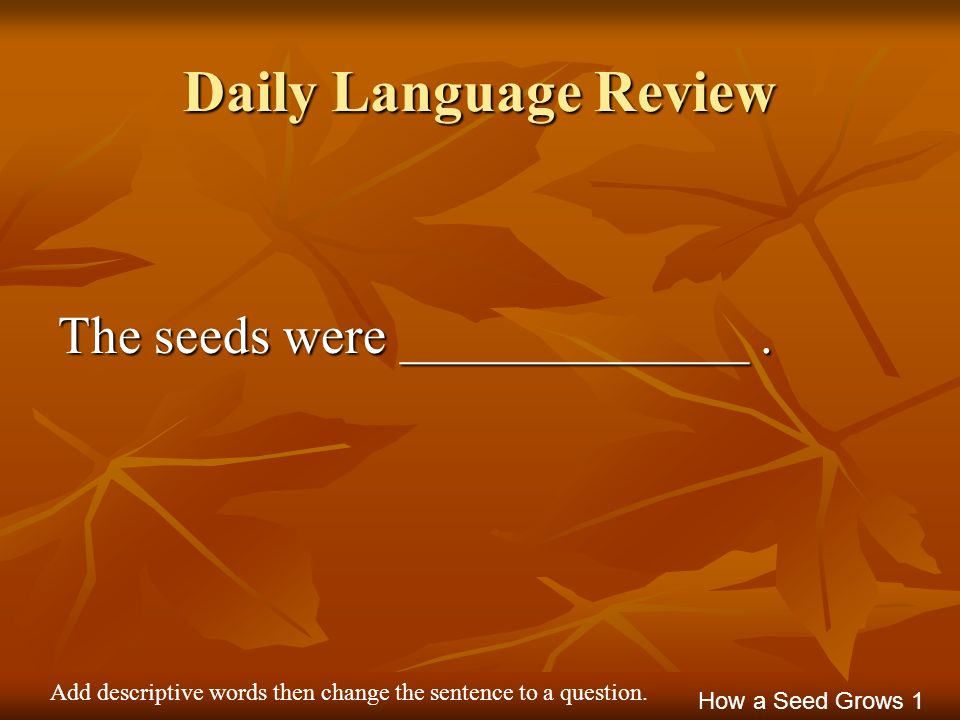 Daily Language Review The seeds were _____________ .