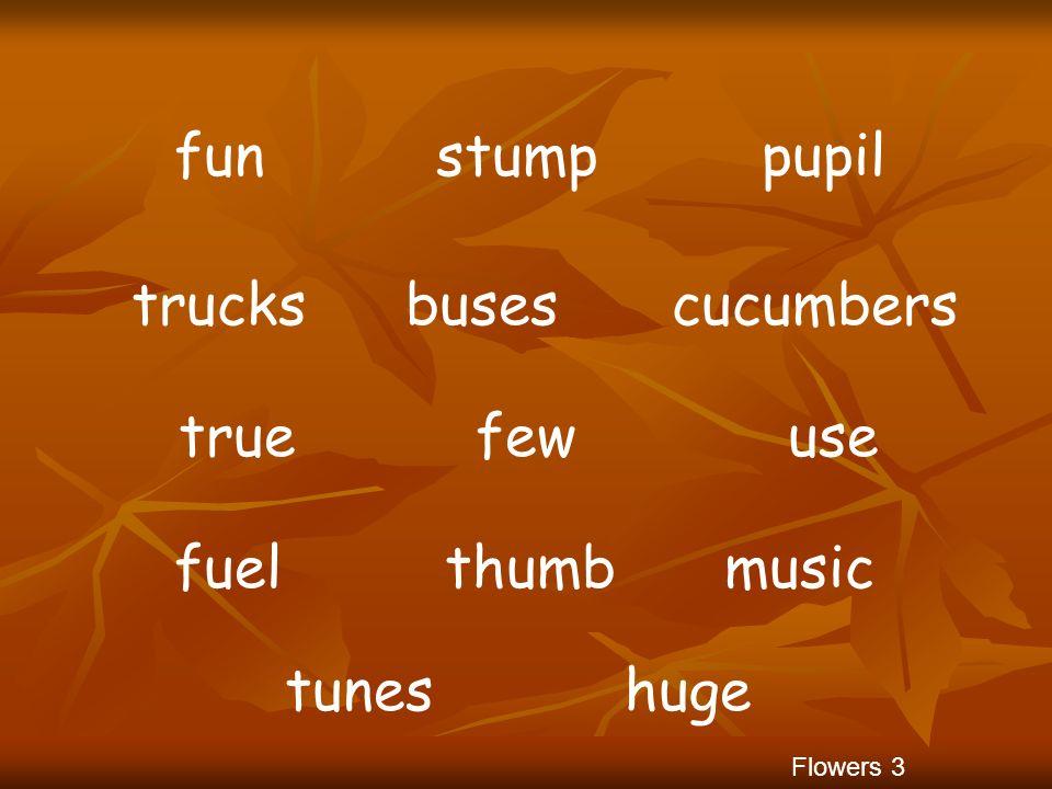 fun stump pupil trucks buses cucumbers true few use fuel thumb music