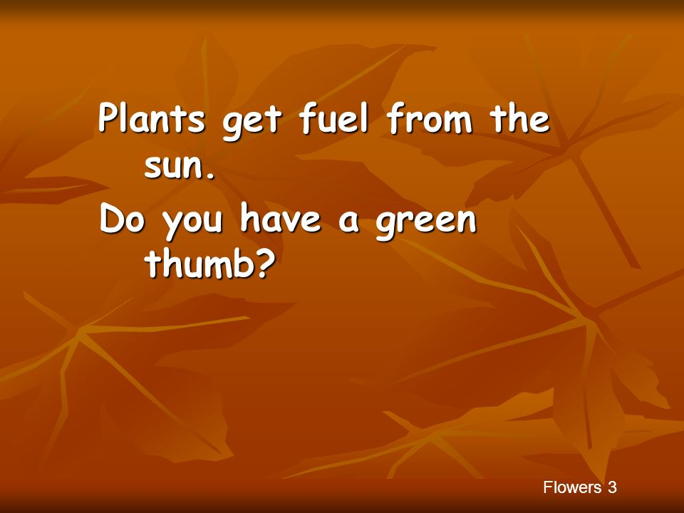 Plants get fuel from the sun. Do you have a green thumb