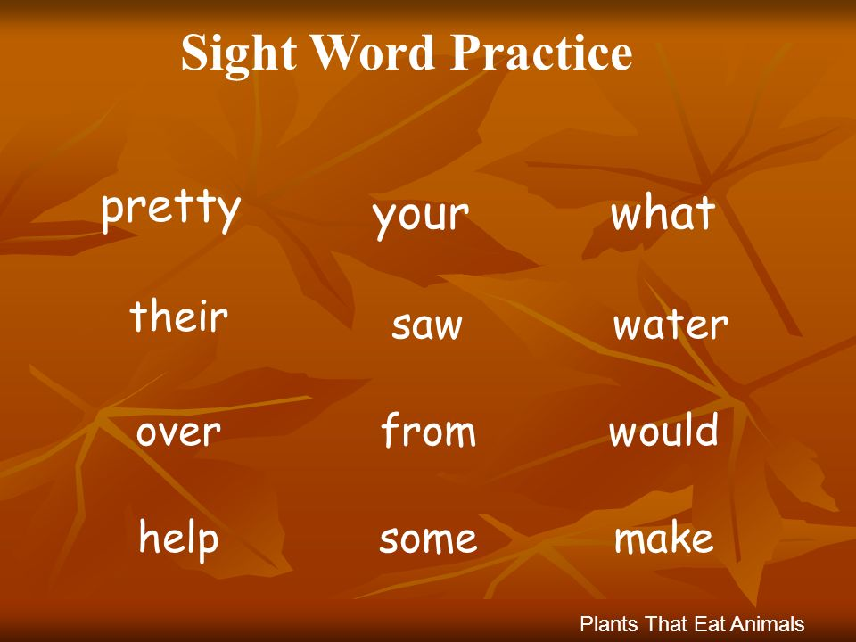 Sight Word Practice pretty your what their saw water over from would