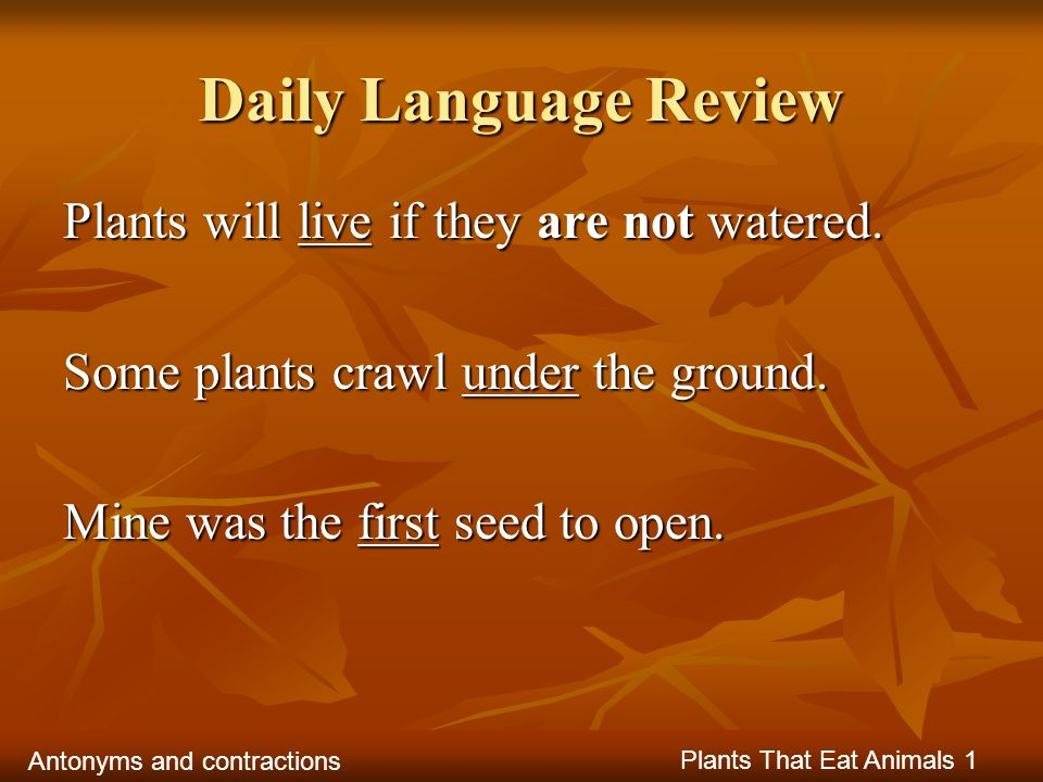 Daily Language Review Plants will live if they are not watered.