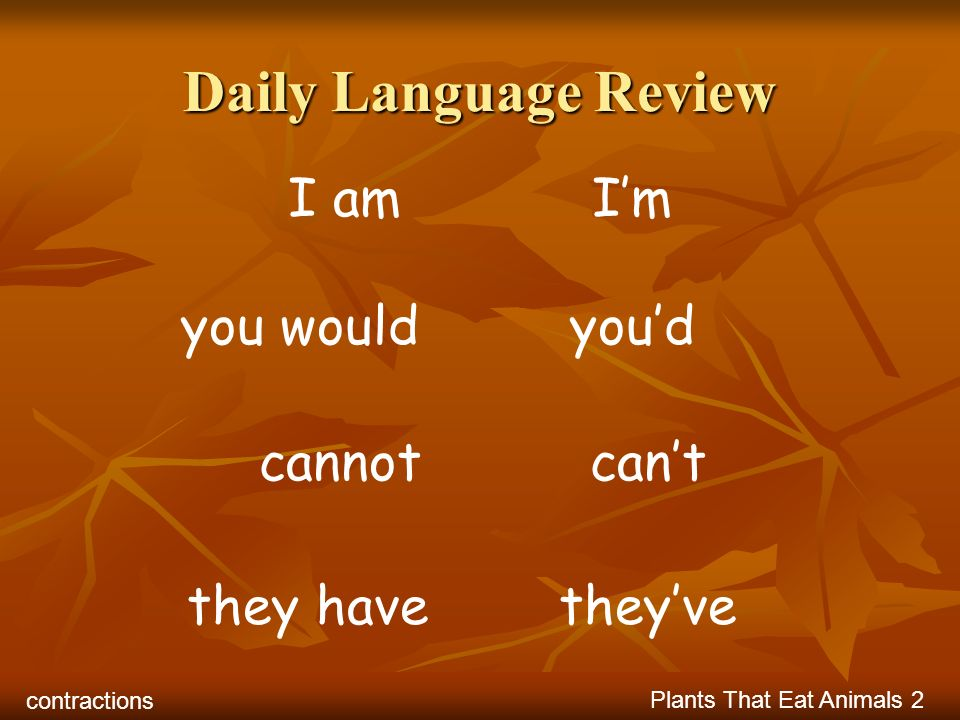 Daily Language Review I am I'm you would you'd cannot can't they have