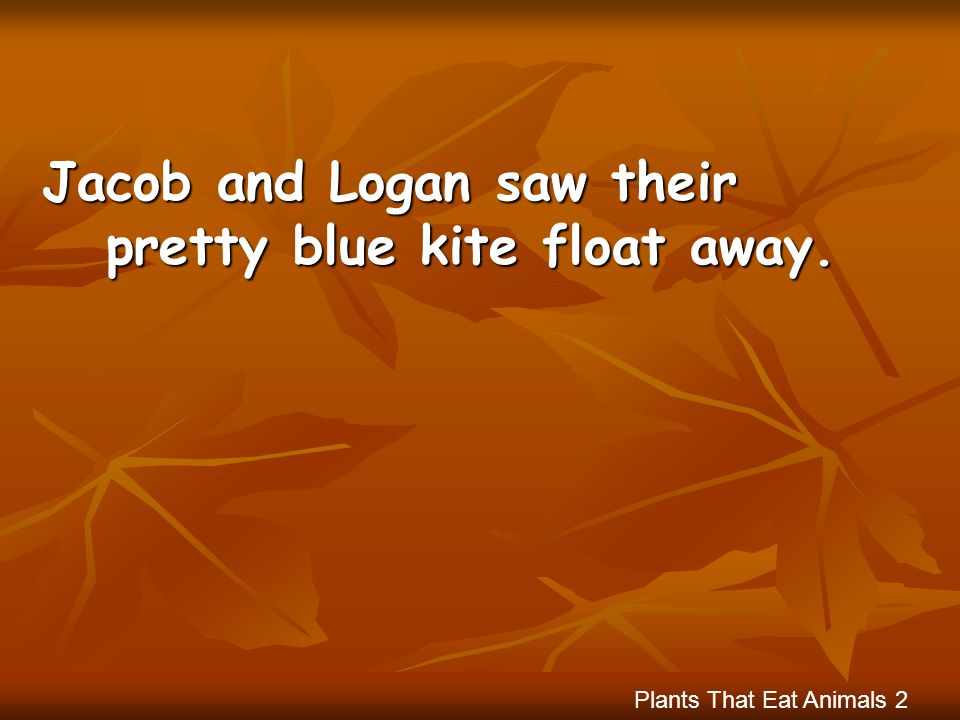 Jacob and Logan saw their pretty blue kite float away.