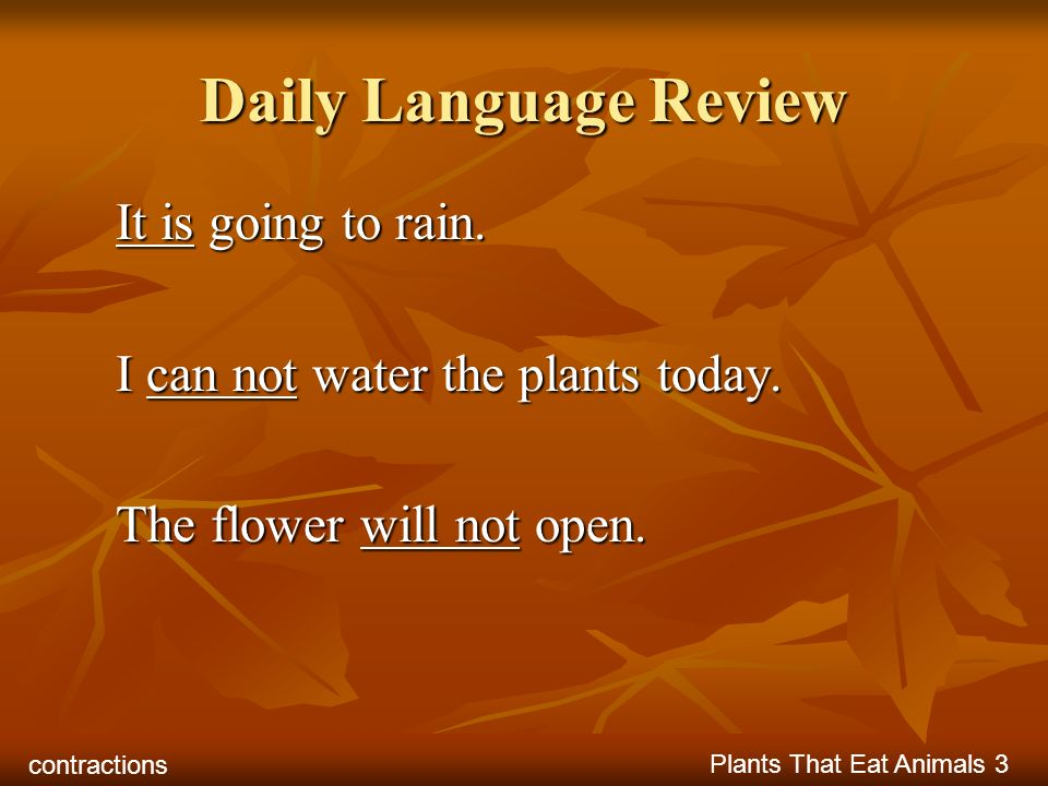 Daily Language Review It is going to rain.
