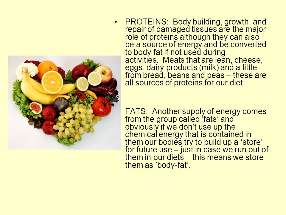 PROTEINS: Body building, growth and repair of damaged tissues are the major role of proteins although they can also be a source of energy and be converted to body fat if not used during activities. Meats that are lean, cheese, eggs, dairy products (milk) and a little from bread, beans and peas – these are all sources of proteins for our diet.